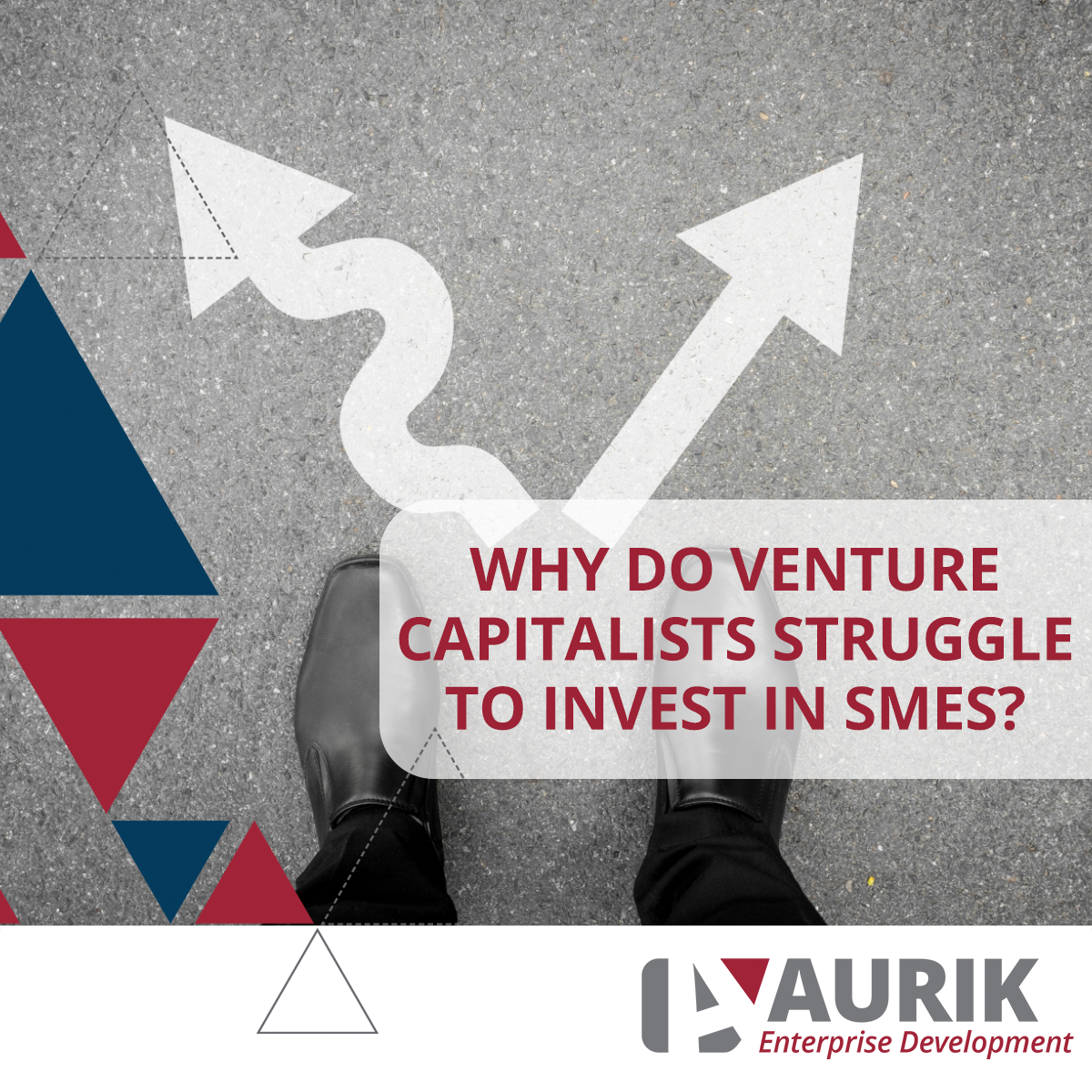 Why VCs struggle to invest in SMEs!